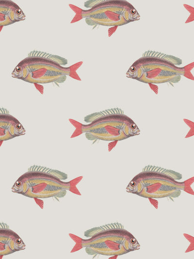 Going Swimmingly - Cream - Wallpaper - Milola Design