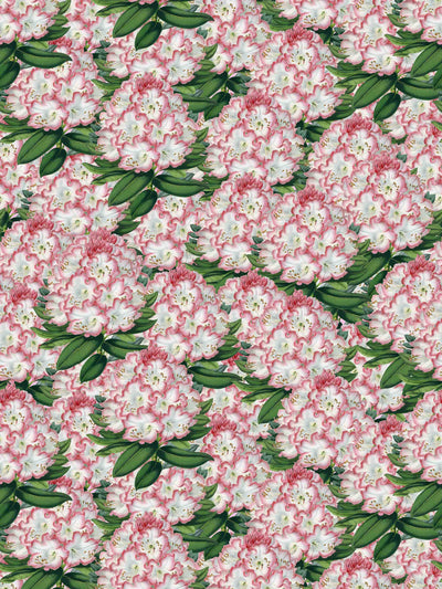 Spring Forever - Wallpaper - Milola Design