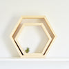 The Hexagon Shelf