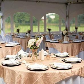 Table Cloth Covers & Overlays