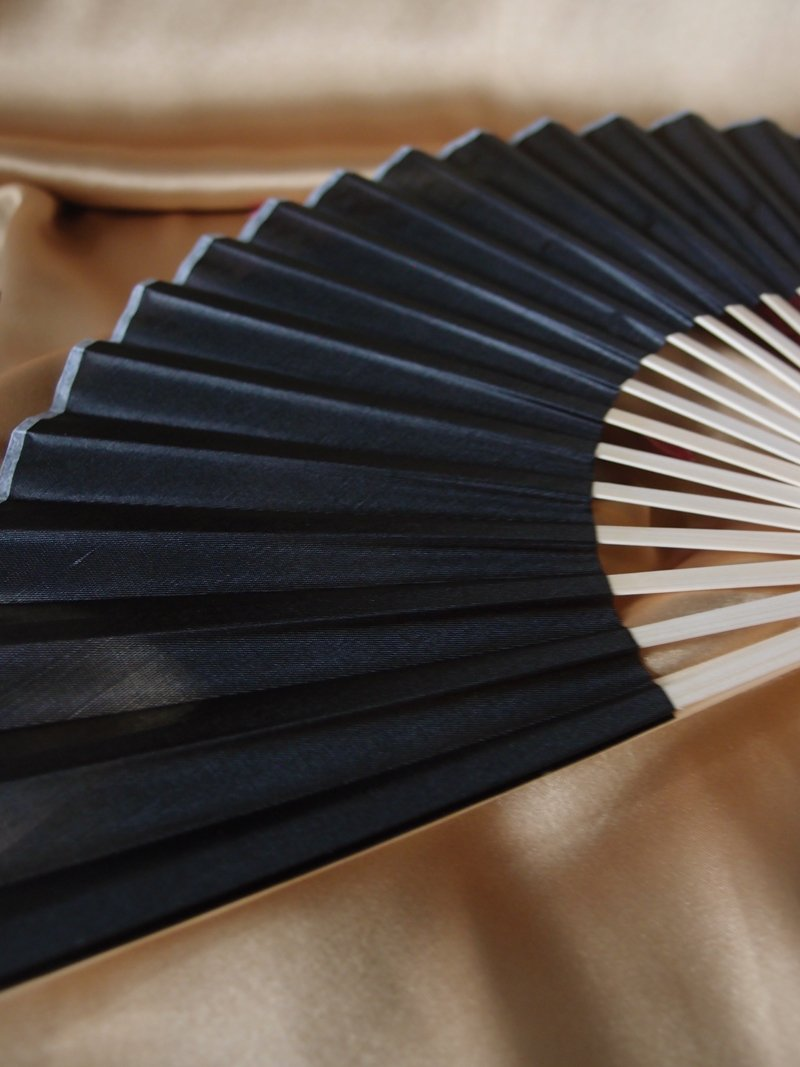 "9"" Black Silk Hand Fans for Weddings (10 Pack) - Luna Bazaar - Discover. Decorate. Celebrate"