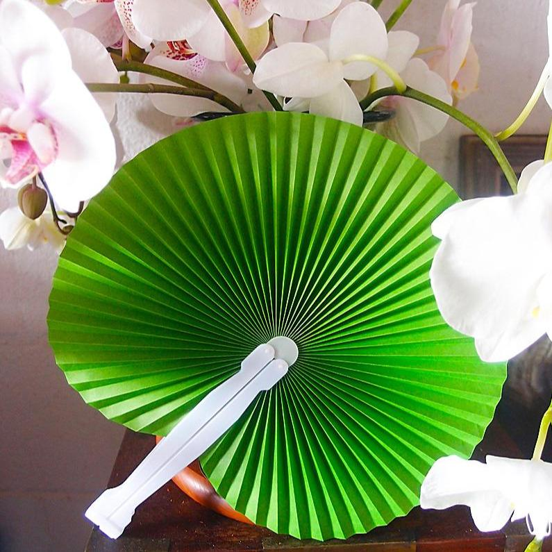 "CLOSEOUT 9"" Green Accordion Paper Hand Fan for Weddings (10 Pack) - Luna Bazaar 