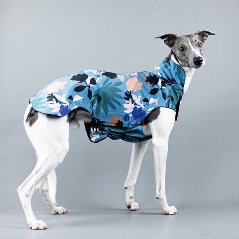 City Breeze dog raincoat™ WHIPPET Regenmantel Summer Storm