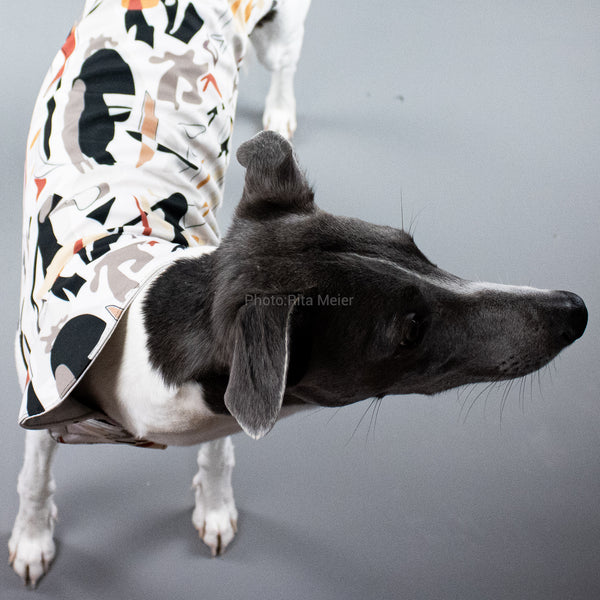 City Breeze dog raincoat™ WHIPPET Regenmantel Savannah