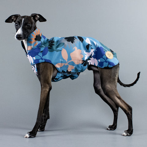 City Breeze dog raincoat™ IGGY Regenmantel Summer Storm