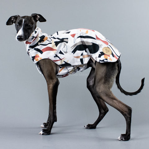 City Breeze dog raincoat™ IGGY Regenmantel Savannah