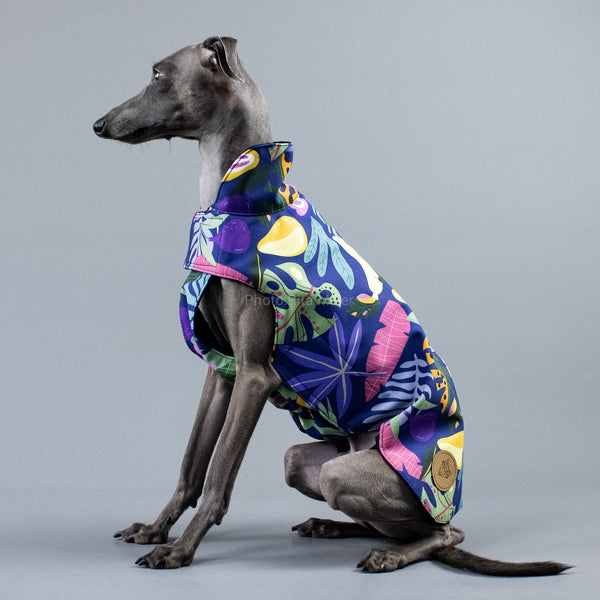City Breeze dog raincoat™ IGGY Regenmantel Fruity
