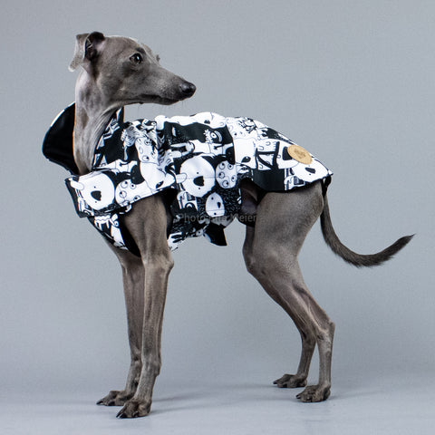 City Breeze dog raincoat™ IGGY Regenmantel Monster