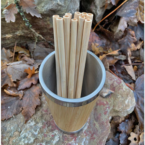 Reusable Bamboo Straws - 10 Pack