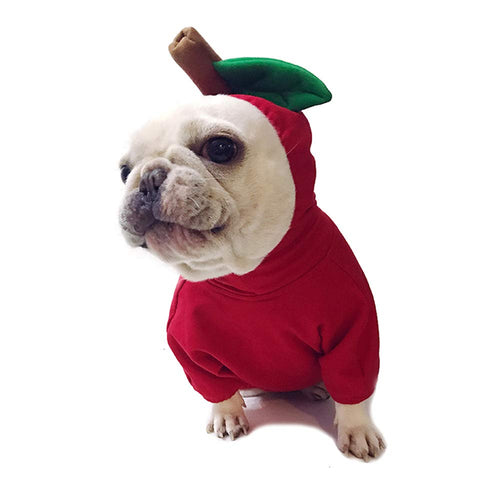 Fruits Pet Hoodie - pawstive