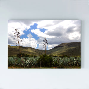 SOUTH AFRICA - GREAT KAROO - landscape