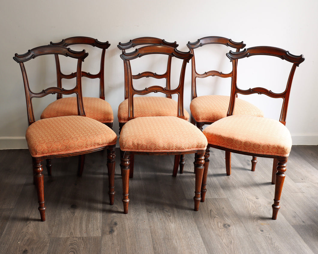Solid Rosewood dining chairs