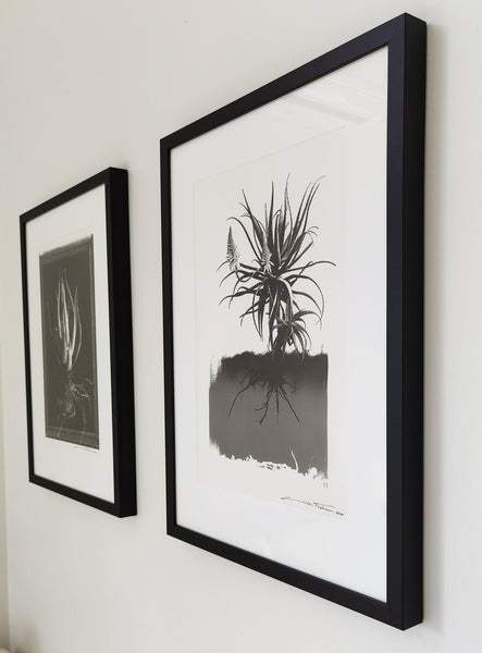 Botanical Art Photo-Print Black & White