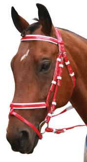 PVC Bridle with Hanovarian Noseband and Rubber Reins