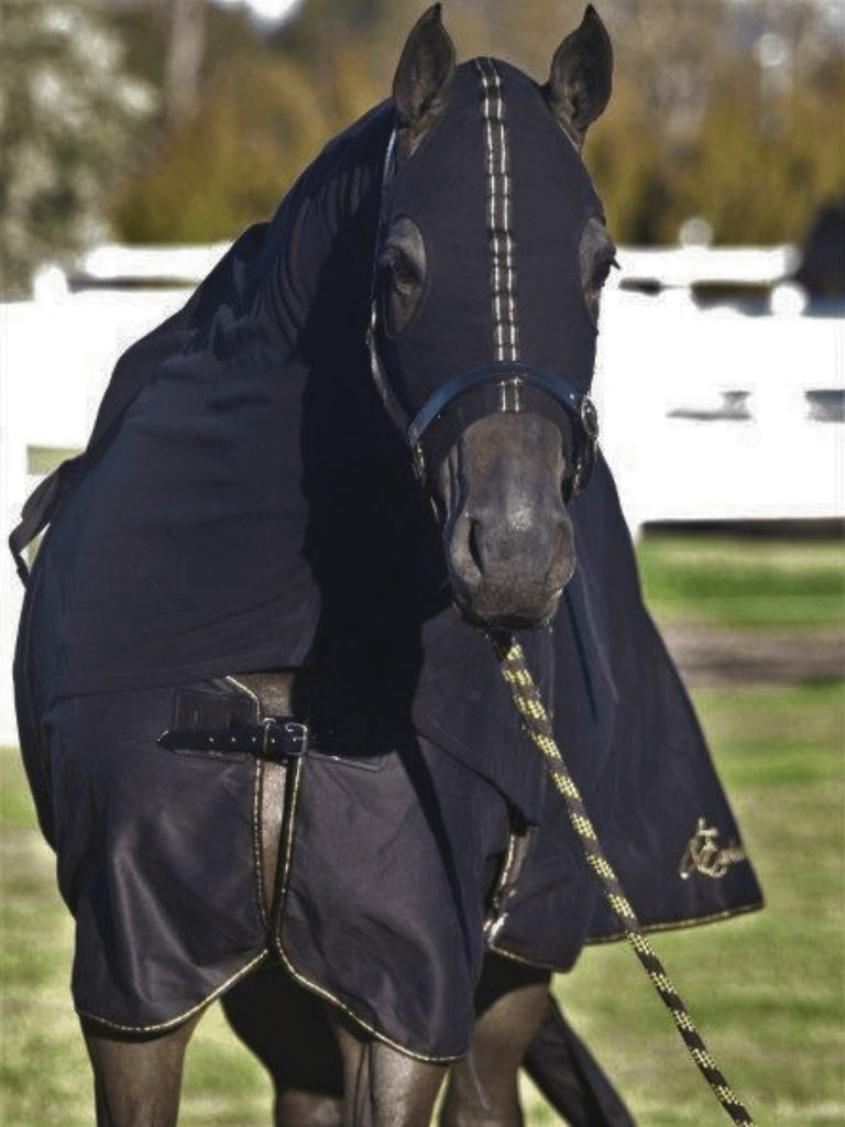 Earlwood Cotton Show Rug and Tail Bag - Black/Gold