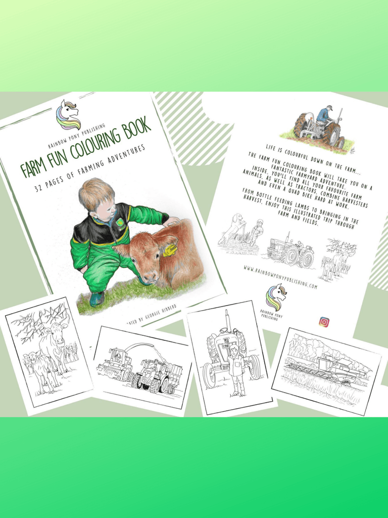 Farm fun colouring book