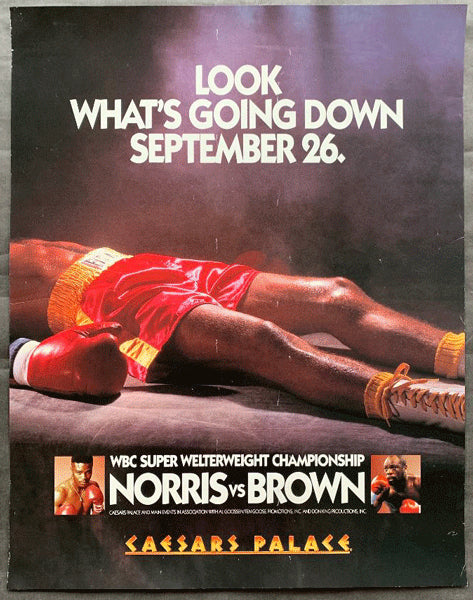 BROWN, SIMON-TERRY NORRIS ON SITE POSTER (1993)
