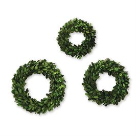 Mini Boxwood Preserved Wreath