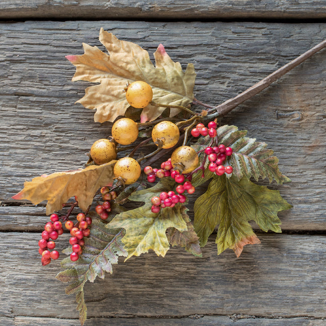 Oak Leaves w / Berries Stem