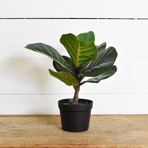 Faux Fiddle Leaf Tree