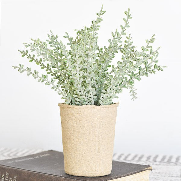 Dusty Stems in Paper Pot