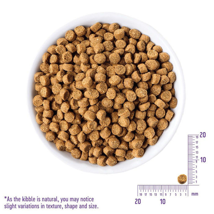 Wellness Complete Health Small Breed Just For Puppy Dry Dog Food 4lbs (1.8kg)