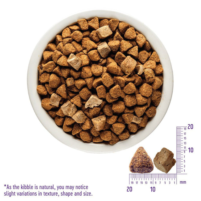 Wellness Core RawRev Puppy Kibble/Freeze-Dried Dog Food