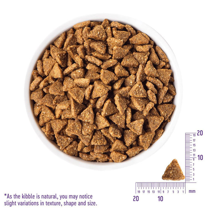 Wellness Core Small Breed Grain Free Healthy Weight Dry Dog Food