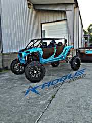 Rogue Offroad RZR 4 Custom Cage