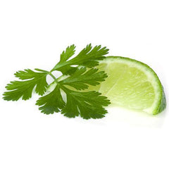 Cilantro Lime Extra Virgin Olive Oil