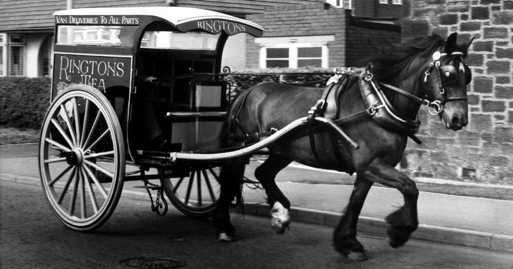 Home delivery business by horse and cart