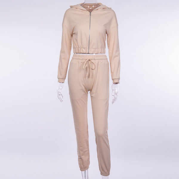 2 Pieces Set Hoodie, Top And Pants Tracksuit Set