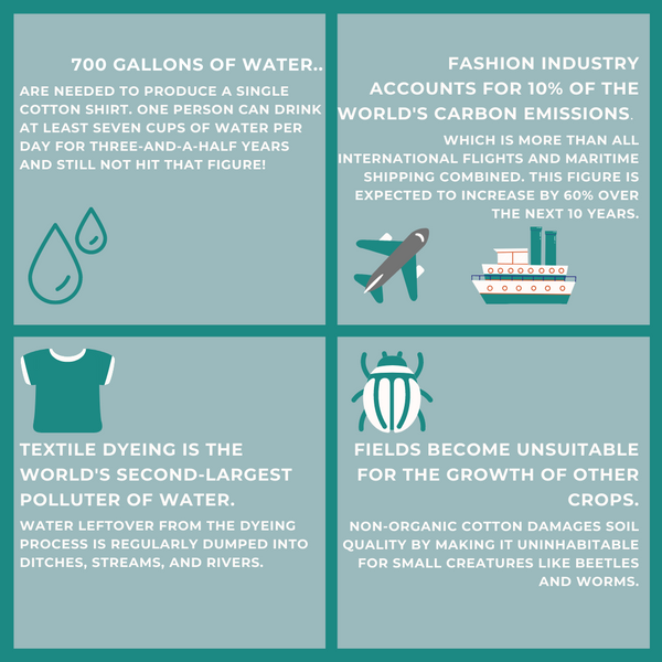 sustainable-clothing-infographic