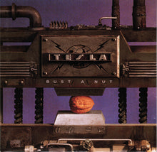Load image into Gallery viewer, Tesla ‎– Bust A Nut - Pre-Owned CD