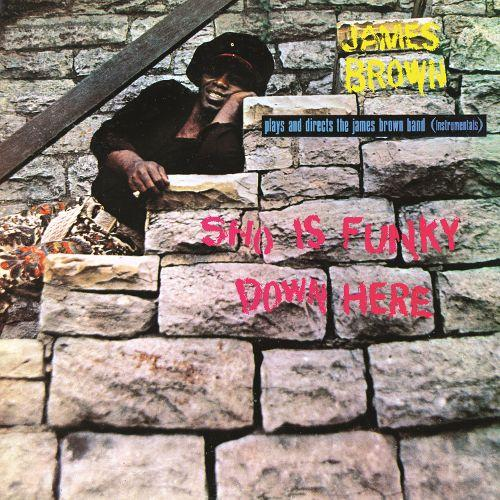 James Brown Plays And Directs The James Brown Band ‎– Sho Is Funky Down Here - New Sealed Vinyl LP