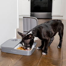 Load image into Gallery viewer, Automatic 2 Meal Pet Feeder