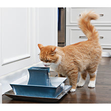 Load image into Gallery viewer, Drinkwell® Pagoda Pet Fountain