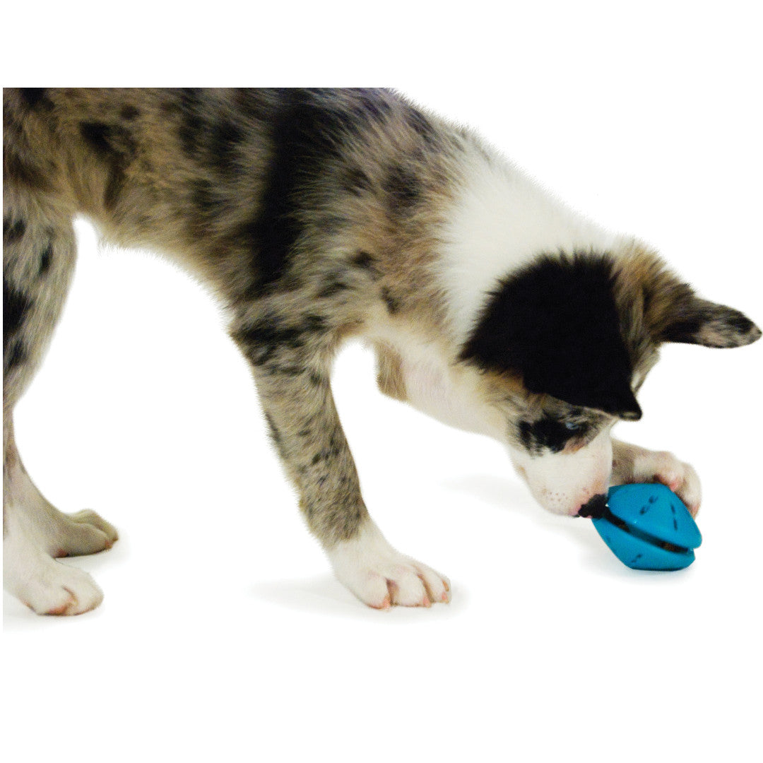 Spielzeug Busy Buddy® Puppy Twist 'n Treat™