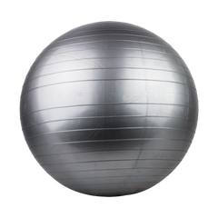 Gym Ball (65CM)