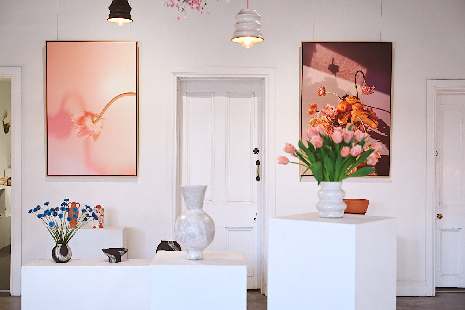 """Botanica Bird Group Exhibition """"Where is my Mind?"""" Photo by Shan Rose Photography"""