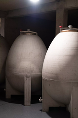 Large cement egg fermenters at Meinklang