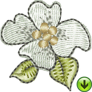 Serious Shopper Flower Embroidery Design | DOWNLOAD