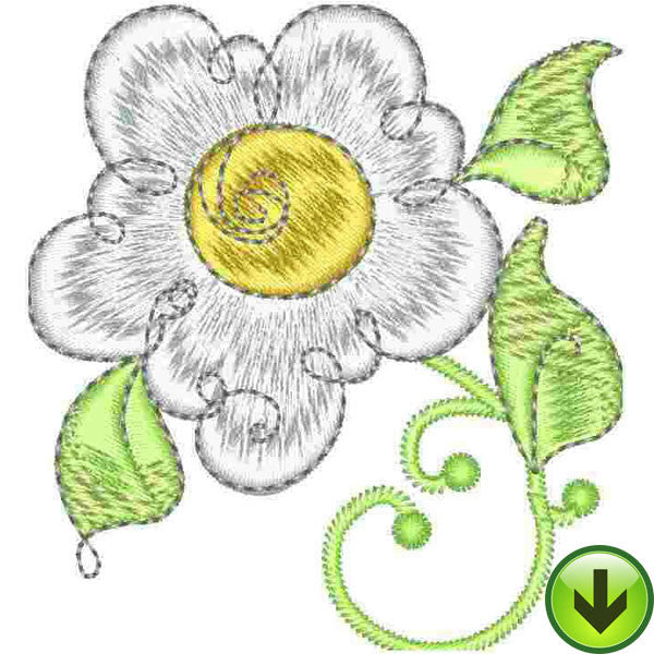 Scrollie Daisy Embroidery Design | DOWNLOAD