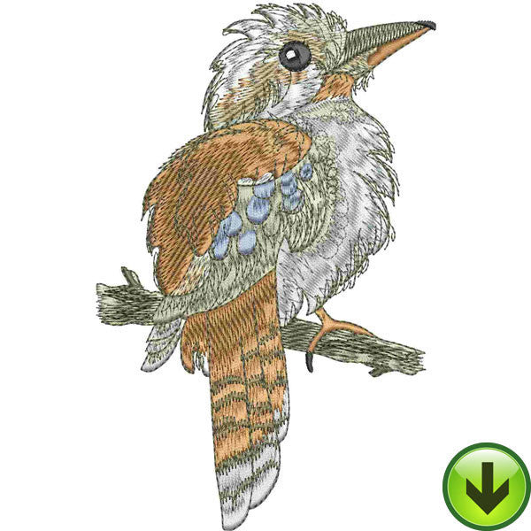 Kooka Embroidery Design | DOWNLOAD