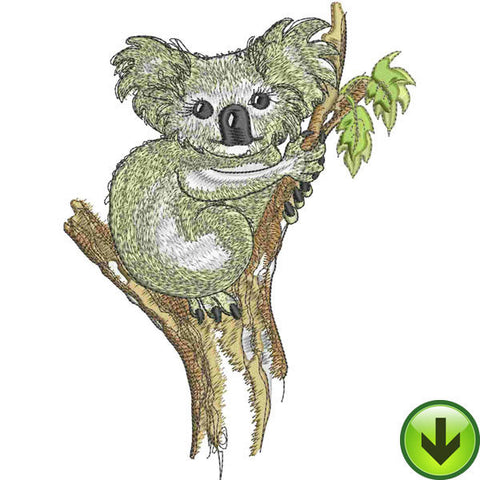 Lala Koala Embroidery Design | DOWNLOAD