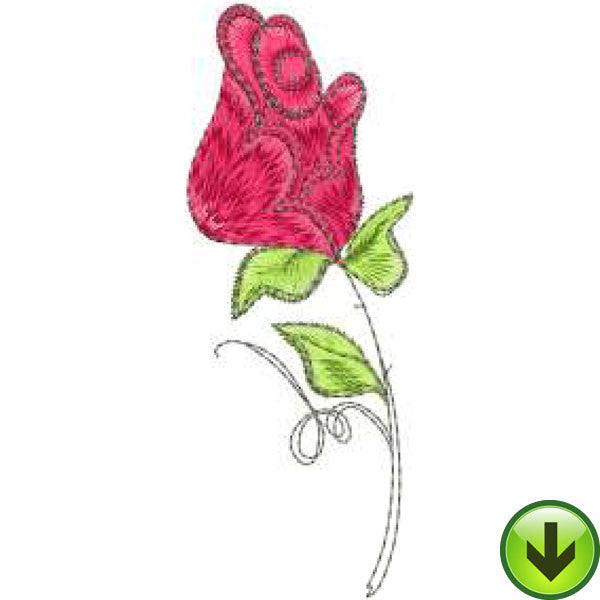 Rose 2 Embroidery Design | DOWNLOAD