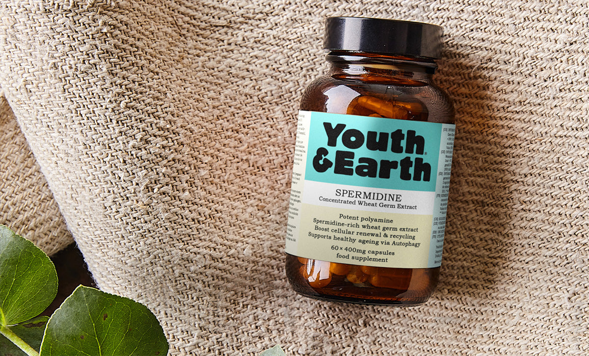 A bottle of Youth and Earths, Spermidine supplement.