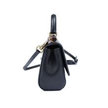 Load image into Gallery viewer, Dolce & Gabbana Dauphine Mini Bag