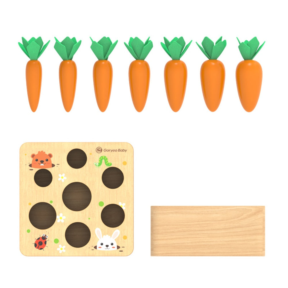 Carrot Sorting Patch