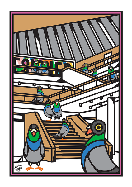 A3 Pigeons in the London Design Museum (Medium)